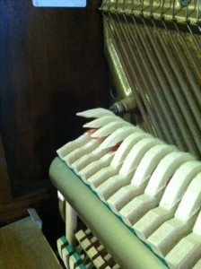 Wool piano hammers becoming detached.